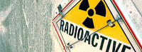 The 2nd Baltic Conference of Pediatric Radiology and Radioprotection.